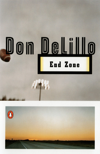 Don DeLillo series—White Noise, Great Jones Street, End Zone, Americana, Mao II, Libra