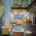Steelcase Worklife New York Environmental Graphics