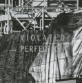 Violated Perfection: Architecture and the Fragmentation of the Modern