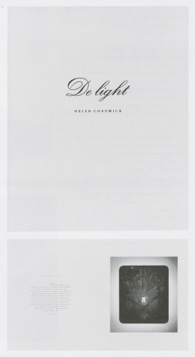 De Light: Helen Chadwick