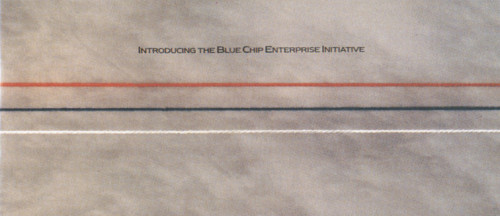 Blue Chip Enterprises Initiative