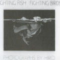 Fighting Fish/Fighting Birds: Photographs By Hiro