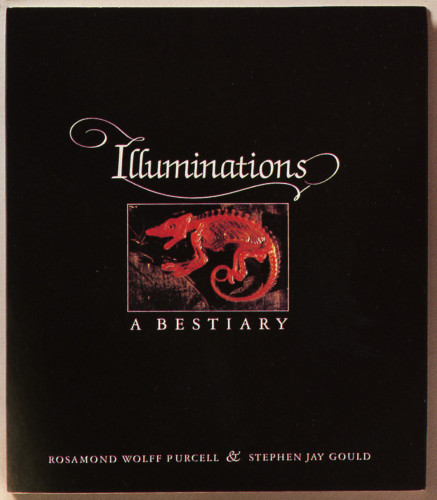 Illuminations, A Bestiary