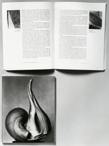 EW 100: Centennial Essays in Honor of Edward Weston