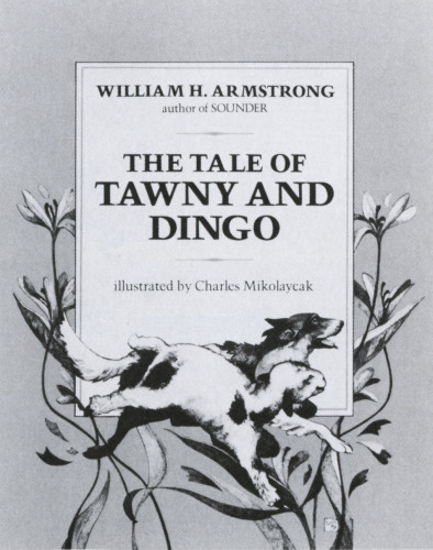 The Tale of Tawny and Dingo