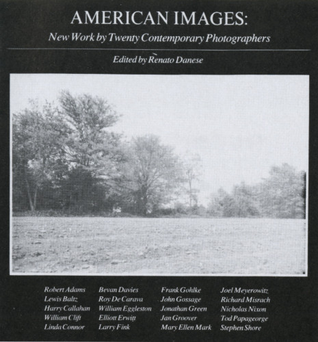 American Images New York by Twenty Contemporary Photographers