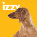 Izzy Catalogue