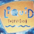 "MTV ""Liquid Television Open"""
