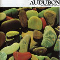Audubon, March 1981