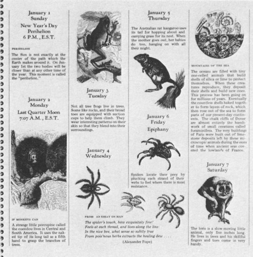 Little Creatures; 1978 Sierra Club Calendar and Almanac for Young People