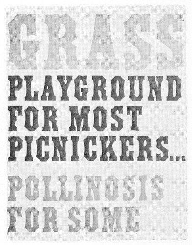Grass Playground for Most Picnickers