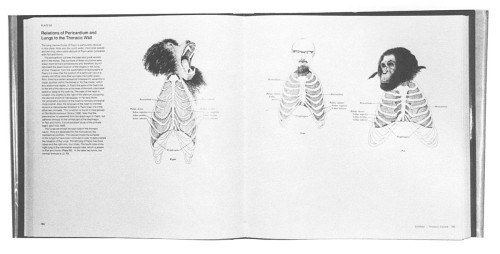 An Atlas of Primate Gross Anatomy