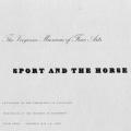 Sport and the Horse