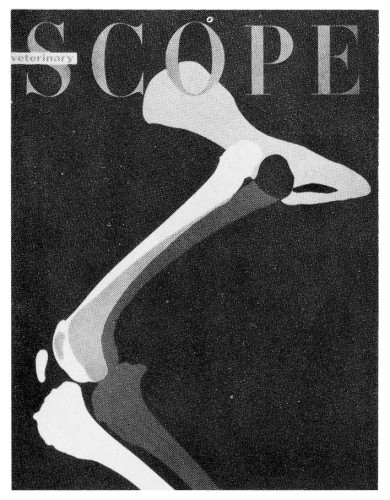 Veterinary Scope, magazine