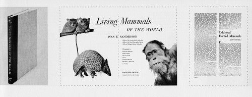 Living Mammals of the World