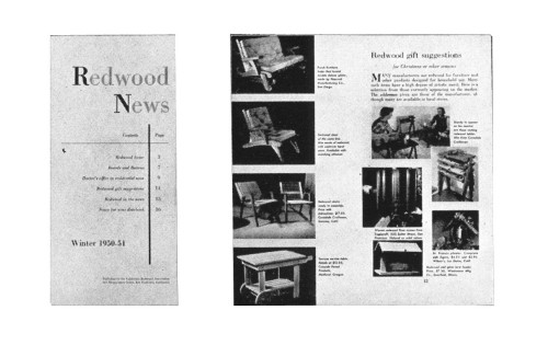 Redwood News, Winter 1950–51