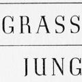 Grassroot Jungles, A Book of Insects
