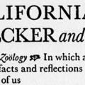 The California Woodpecker and I, A Study in Comparative Zoölogy