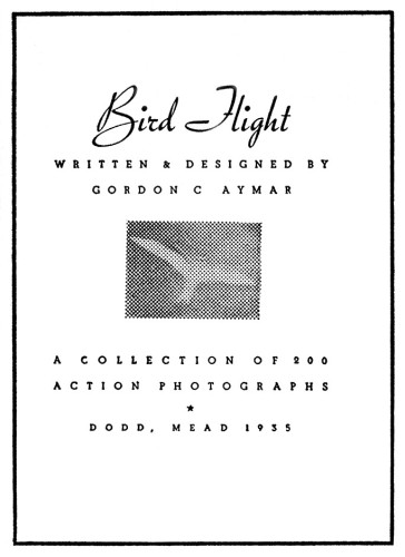 Bird Flight, A Collection of 200 Action Photographs