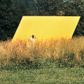 Yellow parallelogram