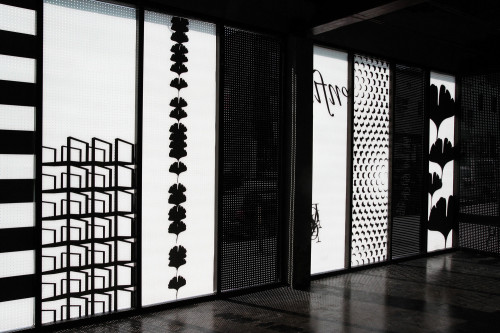 Domison identity program