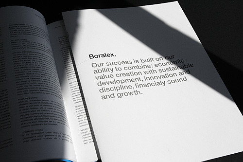 Boralex 2008 Annual Report