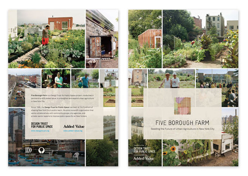 Five Borough Farm: Seeding the Future of Urban Agriculture